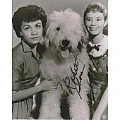 Roberta Shore The Shaggy Dog 3