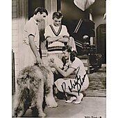 Roberta Shore The Shaggy Dog 4