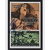 Erica Gavin Vixen 2