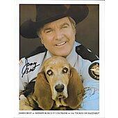 James Best as Sheriff Rosco P. Coltrane 2
