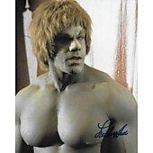 Lou Ferrigno The Hulk 9