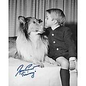 Jon Provost Lassie 14