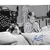 Jon Provost Lassie 8X10 #16