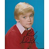 Ricky Schroder Silver Spoons 8X10 #6