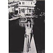 Pamela Bellwood Dynasty #2