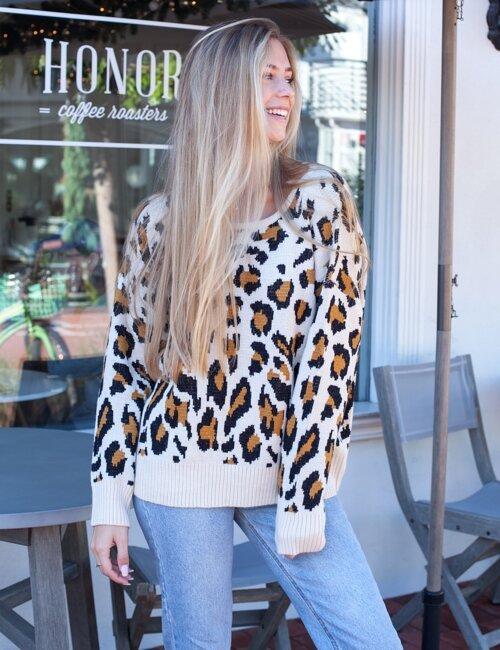 Winter Waves Cheetah Sweater