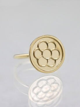Egg of Life Solid 14 Karat Gold Ring